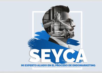 Diseño Banner SEYCA