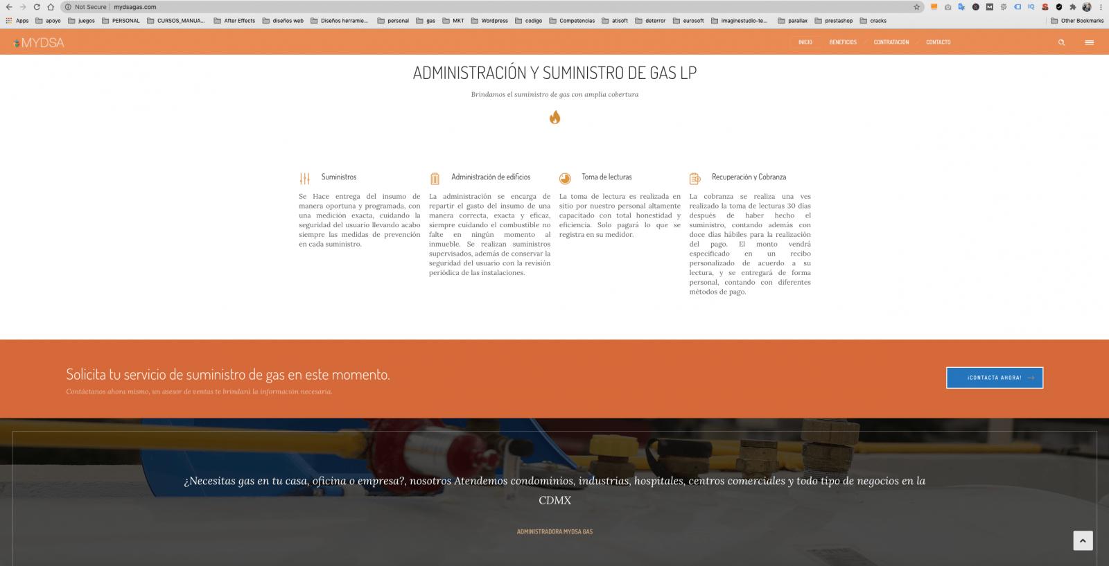 diseño de pagina web mydsagas